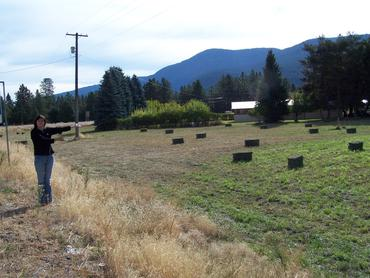 April-points-to-bales-of-freshly-cut-alfalfa-Grand-Forks-BC_large