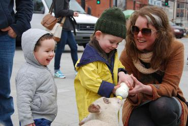 Feeding-the-Lambs-at-the-Kingston-Rally_large