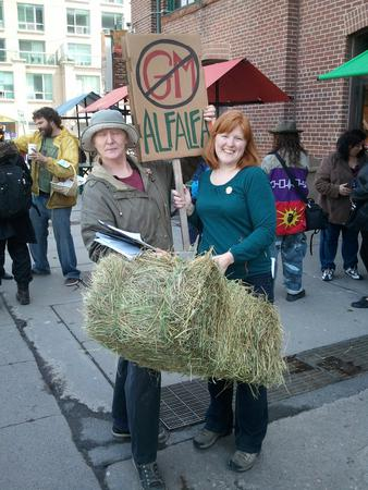 220 people at today's rally in Toronto against GM alfalfa! What a great day.