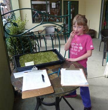 Munching-organic-alfalfa-in-Nelson_large