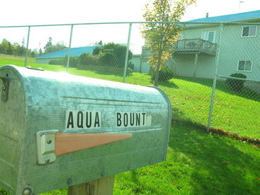 AquaBounty-a-professional-operation_large