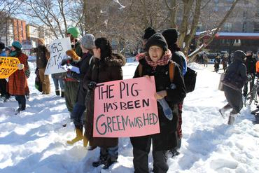 This-Pig-has-been-Greenwashed_large